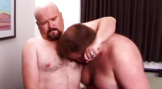 Bear Gay Lover Fuck Sweet