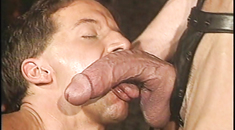 Vintage Gay Porn Videos: 1970s, 1980s, 1990s, 2000s porn ...